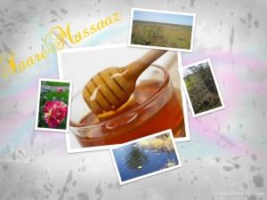 massaazmeega